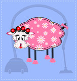 image of a sheep
