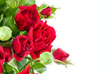 Bunch red roses greeting card