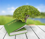 Tree of knowledge growing out of book on the nature background