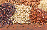 sorghum and quinoa grains