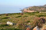 Coastal landscape.