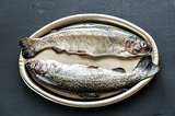 Fresh trouts on the vintage metal tray