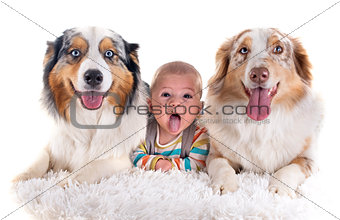 baby and dogs