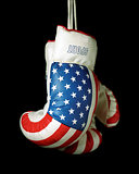 US Boxing Gloves