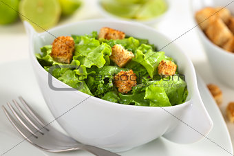 Green Salad with Croutons