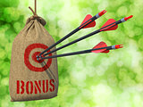 Bonus - Arrows Hit in Red Target.