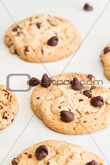fresh backed chocolate chip cookies