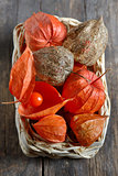 red Physalis fruits