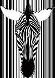 Zebra Barcode Face