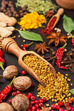 still life with different spices and herbs