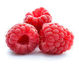 Three Red Ripe Juicy Raspberries Isolated on White Background