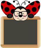 Ladybird Teacher with School Board