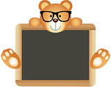 Teddy Bear Teacher with School Board
