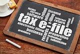 tax e-file word cloud