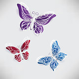 Colorful paper butterfly origami
