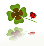 ladybird and shamrock leaf