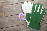 Pair of gloves and flower