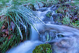 icicles on grass along mountain river