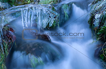icicle on grass by river in winter