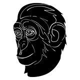 monkey avatar