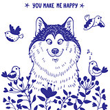 Husky positive