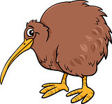 kiwi bird cartoon illustartion