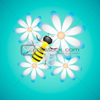 Bee On Camomiles Vector Illustration