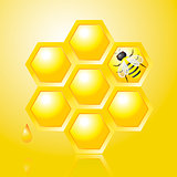 Honeycombs and Bee on Yellow Vector Illustration