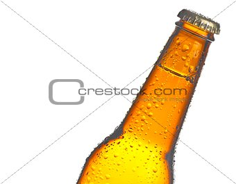 one bottle of fresh beer with drops, isolated with space for text
