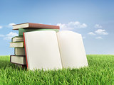 Stack of books and open book on the grass.