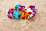 Colorful bright flower diadem on the sand