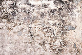 Horisontal concrete grunge background