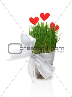 Pot with grass and paper hearts