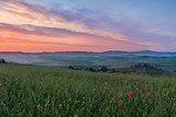 Val d'Orcia after sunrise with violet sky, Tuscany, Italy
