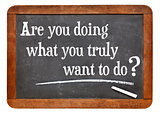 Are you doing what you truly want to do?