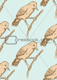 Sketch rufous hornero bird in vintage style