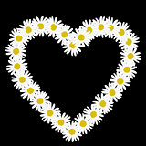 Daisy chain in the shape of a heart