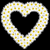 Flowers daisy shape heart