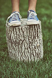Girl standing on a tree stump