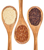 quinoa grains