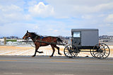 Amish Carriage in Winter