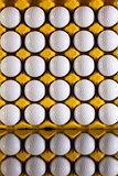 Golf balls in paper carton for eggs