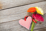 Colorful gerbera flowers and Valentine's day heart