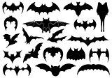 Illustration of different bats