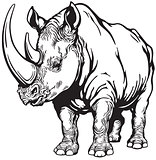 rhinoceros black and white