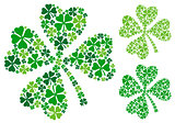 four leaf clover, vector
