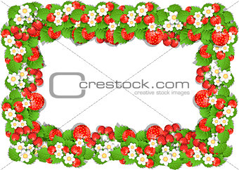 Frame of Strawberry
