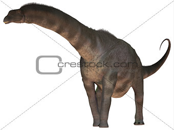 Argentinosaurus over White