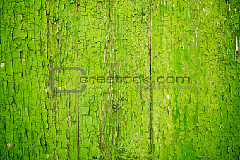 Green Flaking Paint on Wood Old and Worn