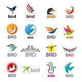 big set of vector logos birds